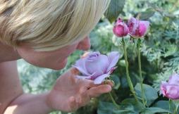 aromachologie olfactotherapie luxembourg naturoscents etienne